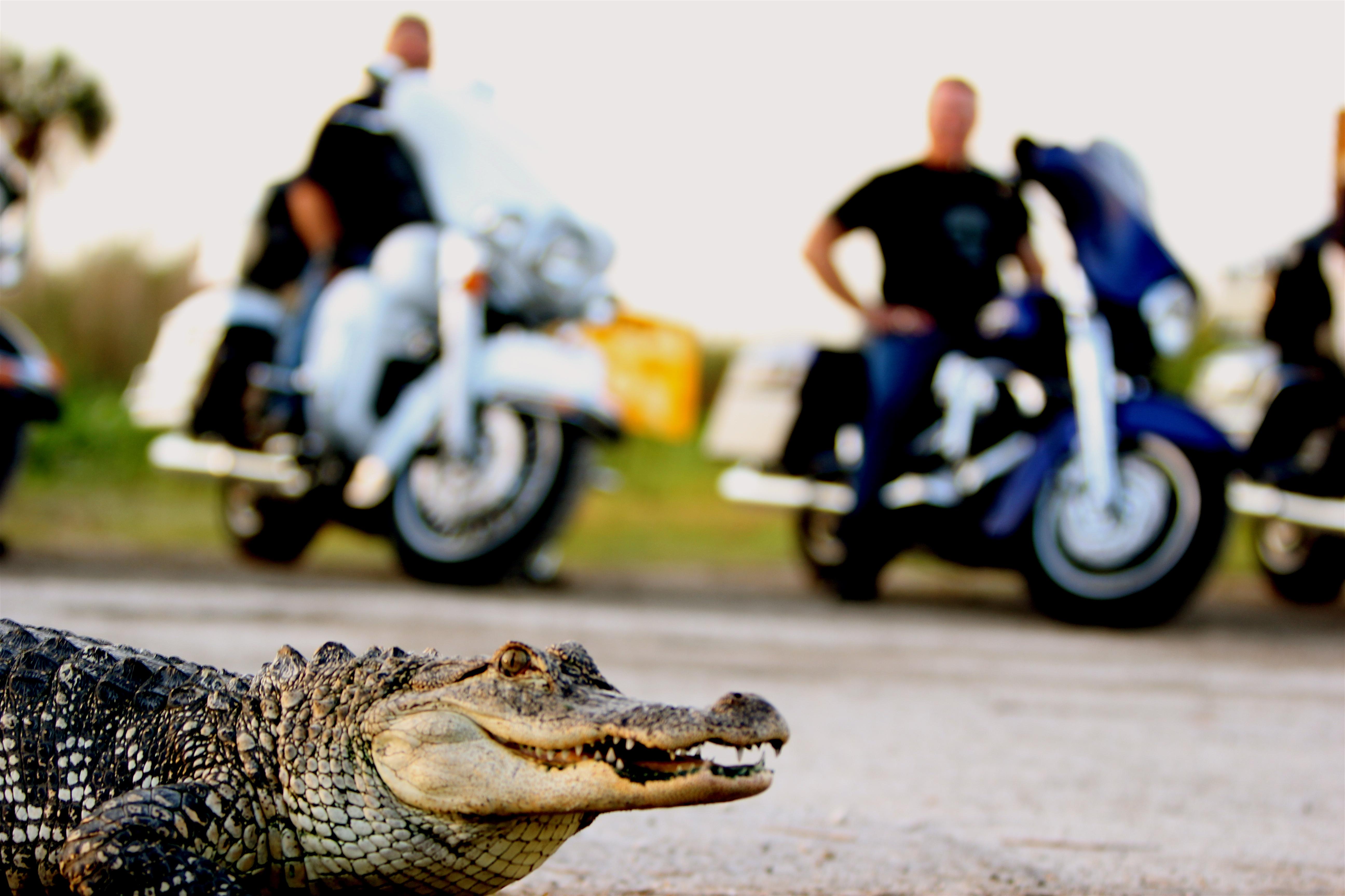 EagleRider Motorradreisen